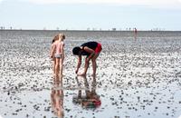 Strand in Cuxhaven an der Nordsee bei Ebbe - Niedersachsen