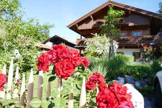 Gästehaus Ankelspitz Gästehaus Ankelspitz im Sommer: Nicht nur unser...