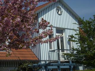 Ferienwohnung Döbbelin Südseite mit Balkon