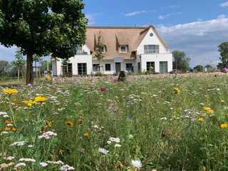 Urlaub de luxe unter Reet - Inseldomizil Stolpe - Händel Außenansicht