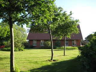 Ferienhäuser Michaelis 1-4 in Quilitz Gartenseite vom Haus