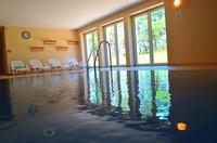 Ferienwohnung am Strand -im Seebad Baabe Rügen Pool im Haus