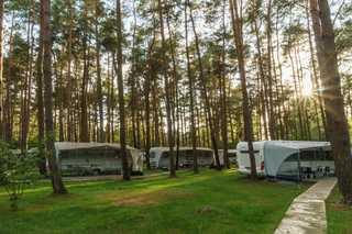 Urlaub im Wohnwagen - mitten im Wald Blick zwischen die Wohnwagen
