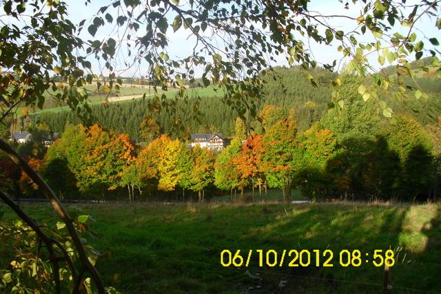 Herbstaufnahme 2012 FH Pöhlablick