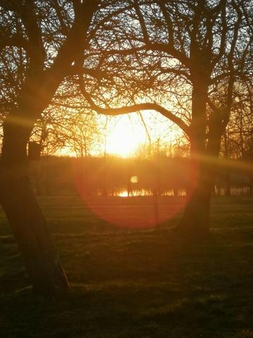 Sonnenuntergang übern Müritzarm