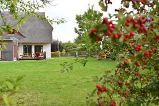 Reetdachhaus Treibholz großer Garten