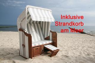Zempin Ostseepark WE 31 **Insel Usedom**150m zum Strand** saisonal mit Strandkorb direkt am Meer