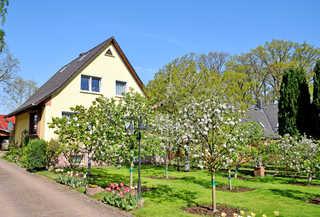 Ferienwohnungen in Baabe auf Rügen Ferienwohnungen in Baabe