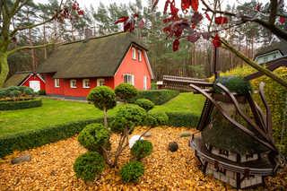 Ferienhaus Silbermöwe Ferienhaus Silbermöwe