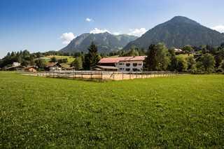 der Landhof Landidylle mit Bergblick
