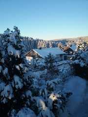 Ferienwohnung Waldblick Ausblick