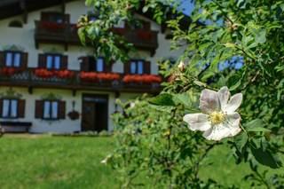Oberreiterhof Natur pur