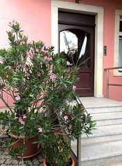 Ferienwohnungen an der Elbfähre und Elbhangblick Hauseingang