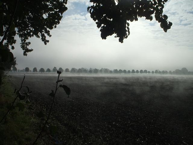 Herbst-Atem im Oderbruch