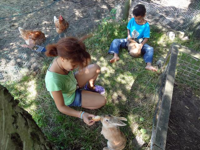 Unsere Kaninchen und Hühner