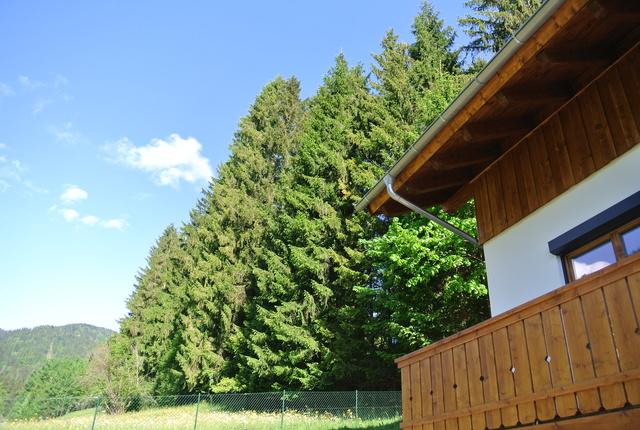 Blick vom Haus