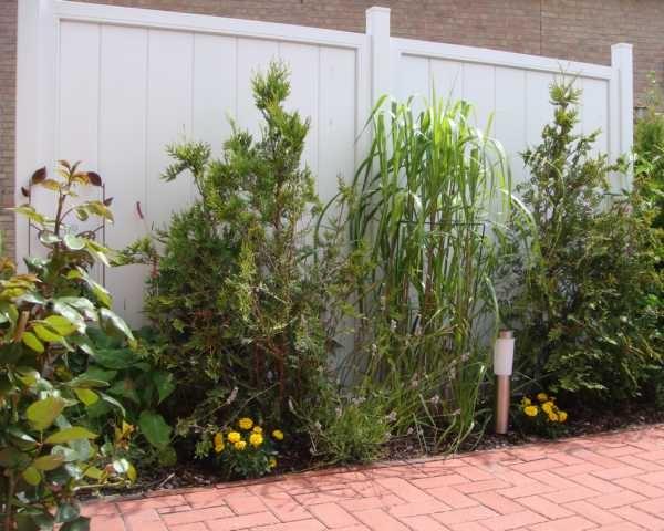 Terrasse mit Blumenbeet und Solarleuchte
