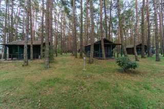 Urlaub im Bungalow - mitten im Wald Blick auf die Bungalows