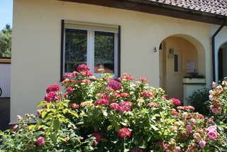 Ferienhaus Debus Hauseingang