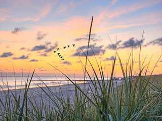 Strandläufer Strand vor der Unterkunft...bei Sonnenuntergang