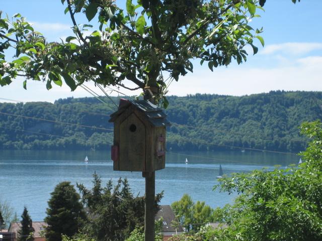 Vogelhaus mit Seeblick