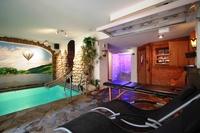 Simonis mit Hallenbad und Sauna Wellnessbereich zur Alleinnutzung im Souterrain
