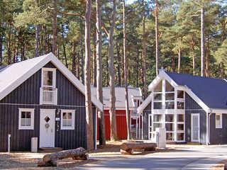 Strandpark Baabe -F570 | Haus 250 mit Kamin+Sauna+Terrasse Das Ferienhaus 250 im Strandpark Baabe im Ostse...