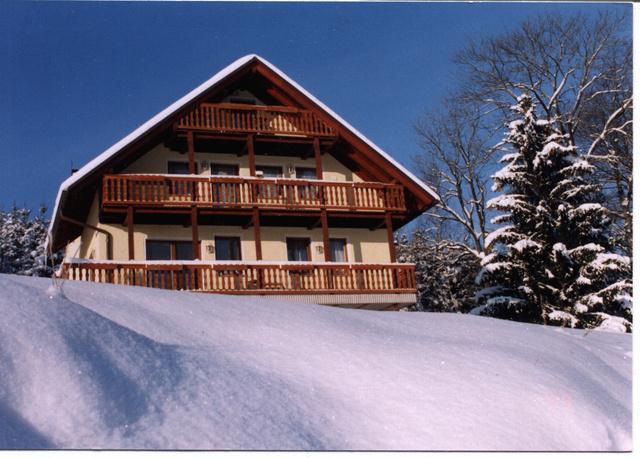 Ferienhaus Pöhlablick im Winter