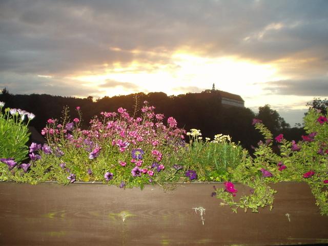 Schloßblick von der Terrasse aus