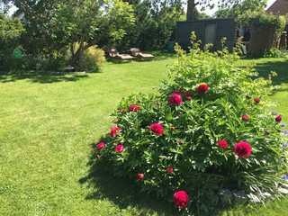 Ferienwohnung Familie Seebach schöner Garten