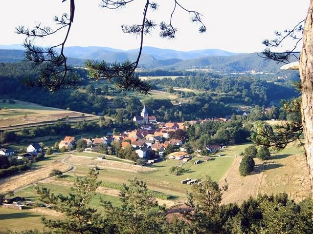 Rumbach im Pfälzer Wald