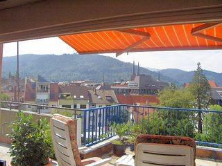 Freiburg Citywohnung Ausblick vom Esszimmer auf die Terrasse nach Süden