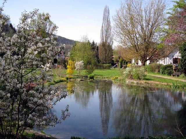 Ortspark im Frühling