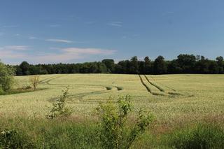 Ferien auf dem Töpferhof Blick über Feldern und Wäldern