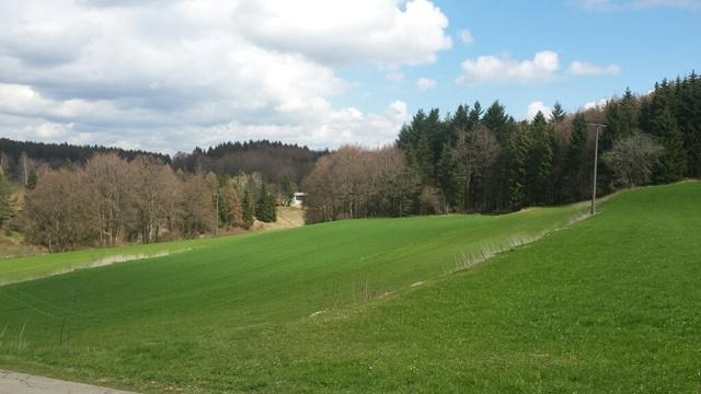 Panoramablick vom Ferienhaus aus