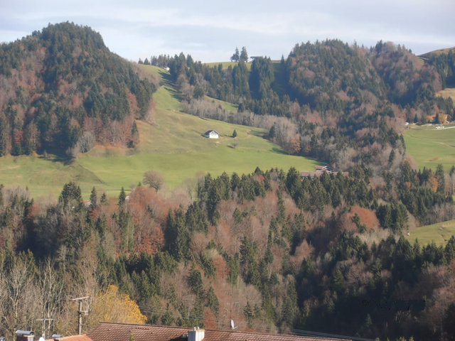 Blick vom Balkon - Das Hündle von Westen
