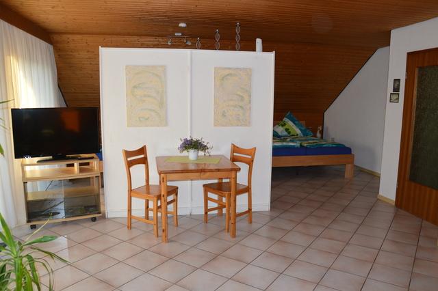 Wohnzimmer mit abgetrenntem Schlafbereich