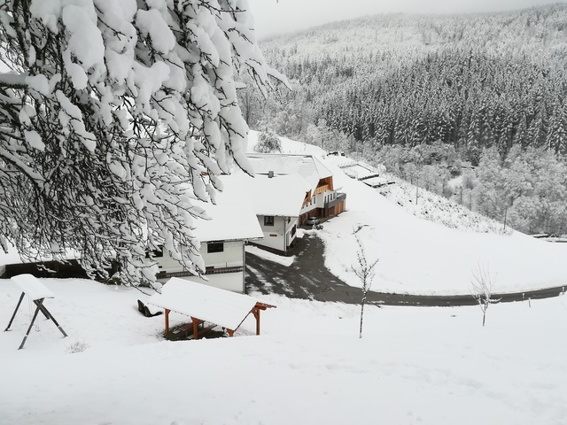 Schnee bedeckter Hof