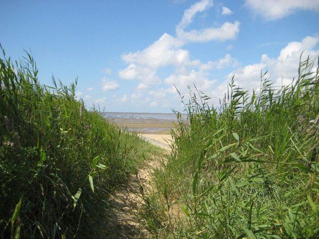 Weg vom Finkenmoor (Werner Wald) zum Strand