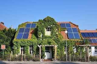 Ferienhaus Menschen, Meehr & wilder Wein Außenansicht