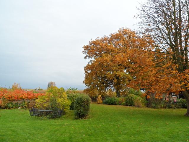 Blick in den Töpperhusgarten im Herbst