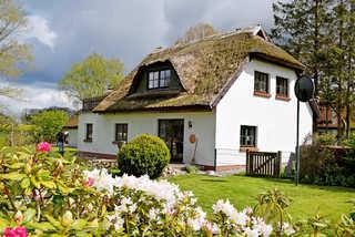 Ferienhaus und -wohnung unterm Reetdach in Woorke Ferienhaus und -wohnung unterm Reetdach in Woor...