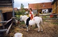 Ponyreiten mit Lady