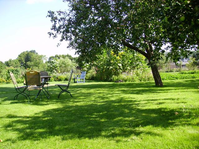 Der Garten mit Lagerfeuerstelle