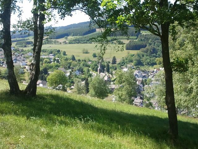 """Ansicht vom """"Hackelberg"""" auf Züschen"""
