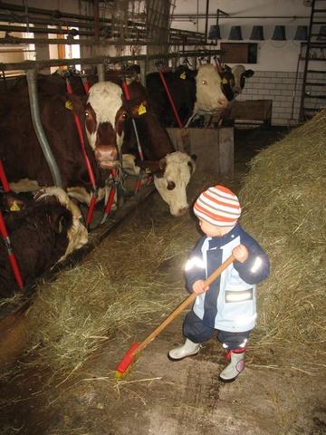 Kinder helfen im Stall