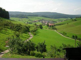 Schwörerhof. Sommerlicher Ausblick vom Hof auf Schuttertal