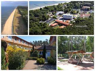 Zempin Ostseepark WE 18 **Insel Usedom**100m zum Strand** Collage Ostseepark